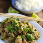 Vietnamese Lemongrass Chicken | platingsandpairings.com