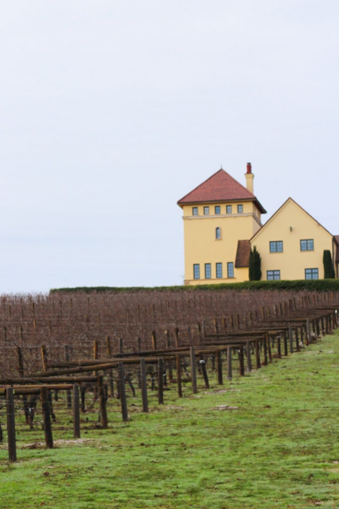 The Best Wineries to Visit in the Willamette Valley - Eugene, Oregon | platingsandpairings.com