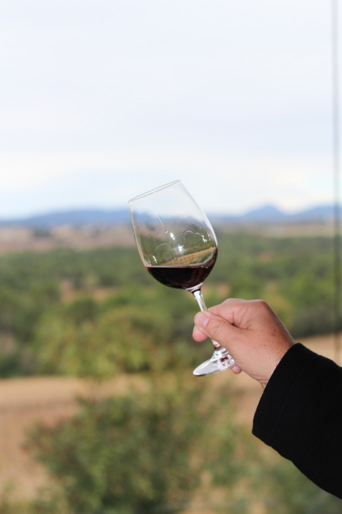 Wine Tasting in the Penedès Region of Spain - Less than 1 hour outside of Barcelona | platingsandpairings.com