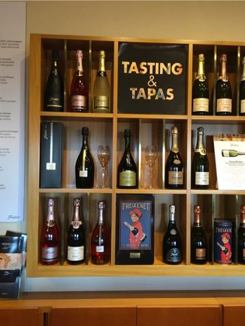 Wine Tasting-Freixenet