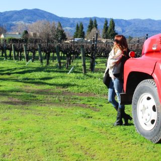 Winter WINEland | Sonoma Wine Tasting