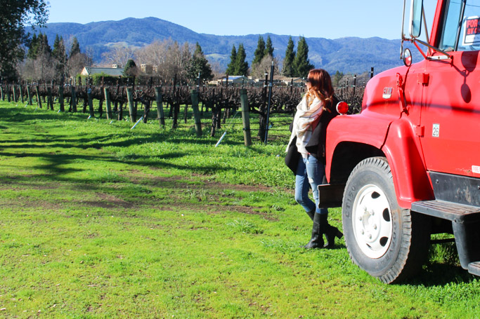 Winter WINEland is the perfect way to experience all the wineries that Northern Sonoma County's Wine Road has to offer.