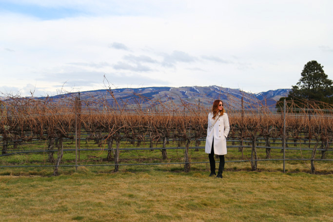 Rasa Vineyards is located on the outskirts of Walla Walla, Washington, with a fantastic view of the Blue Mountains and a fantastic wine tasting lineup. | platingsandpairings.com
