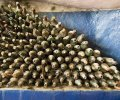 Dusty wine bottles at Principe Corsini estate