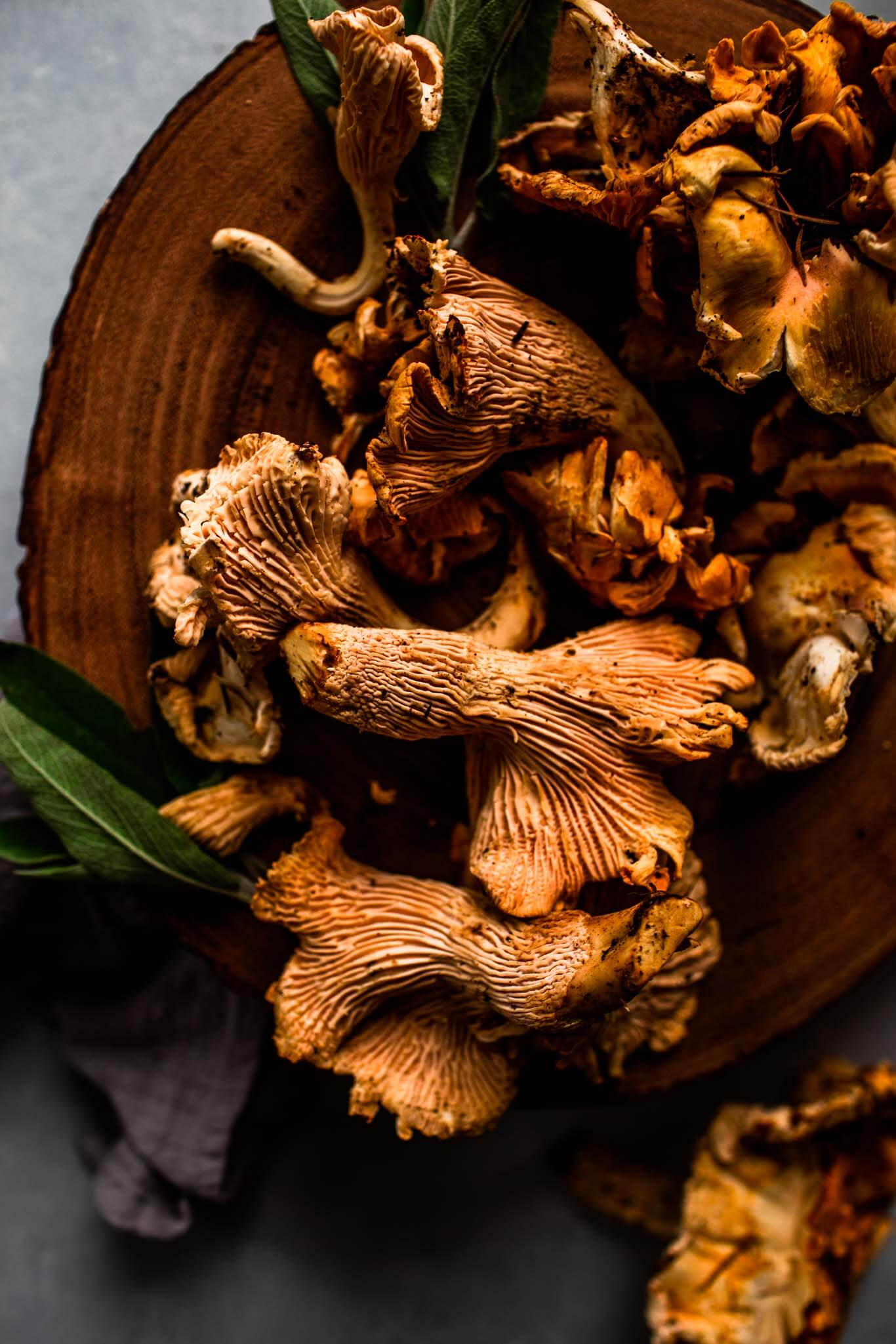 Pile of chanterelle mushrooms.