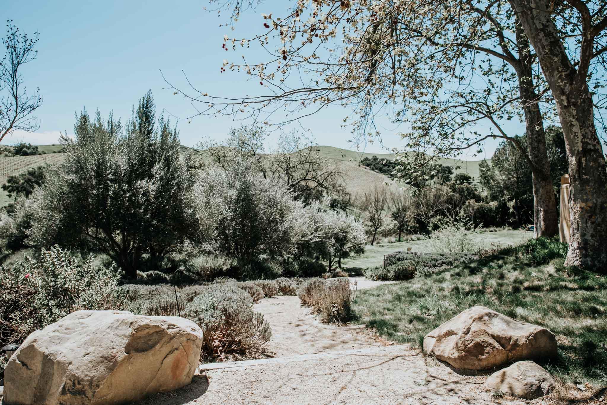 View at Demetria estate.
