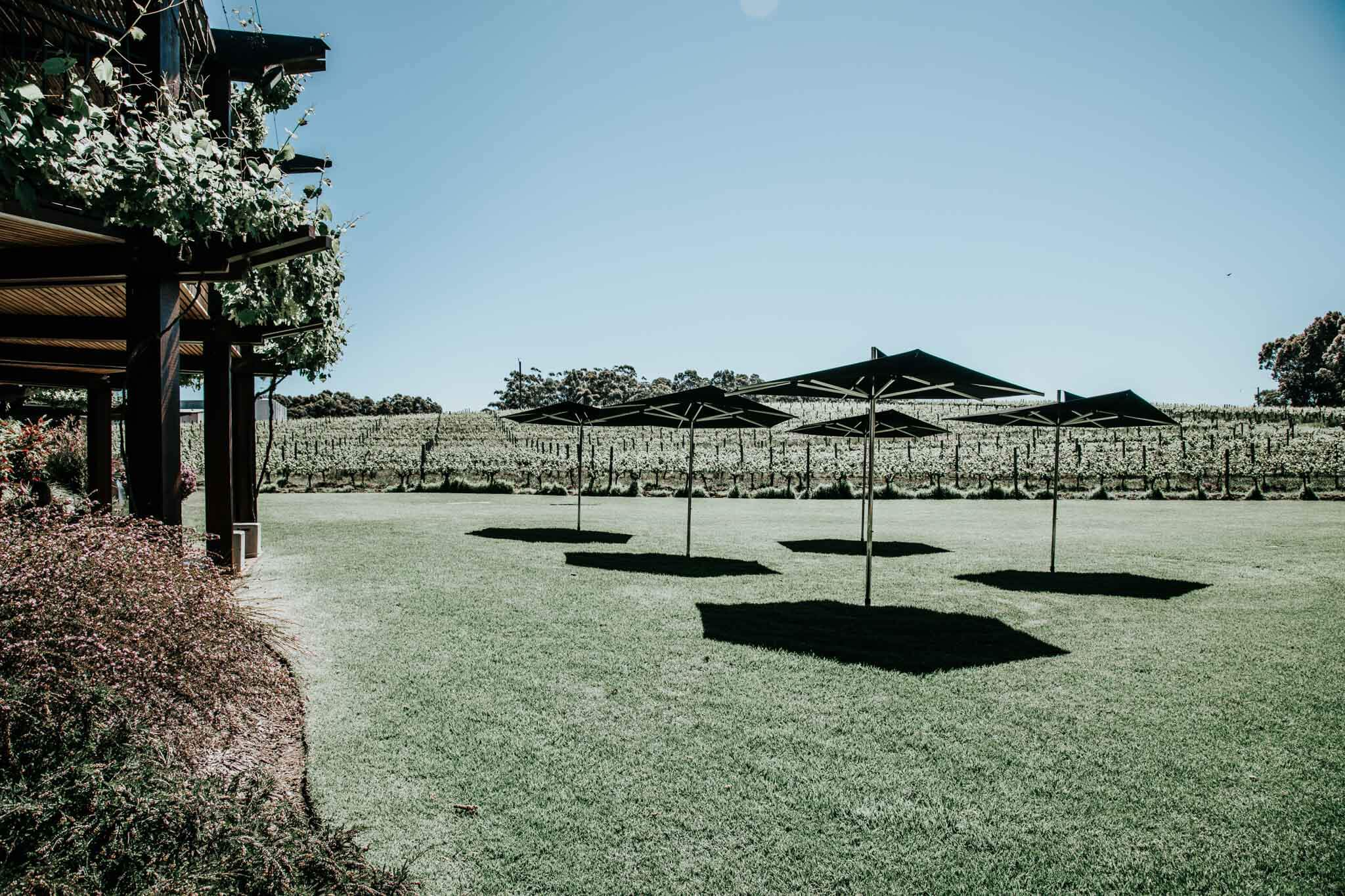 outside umbrellas at vasse felix