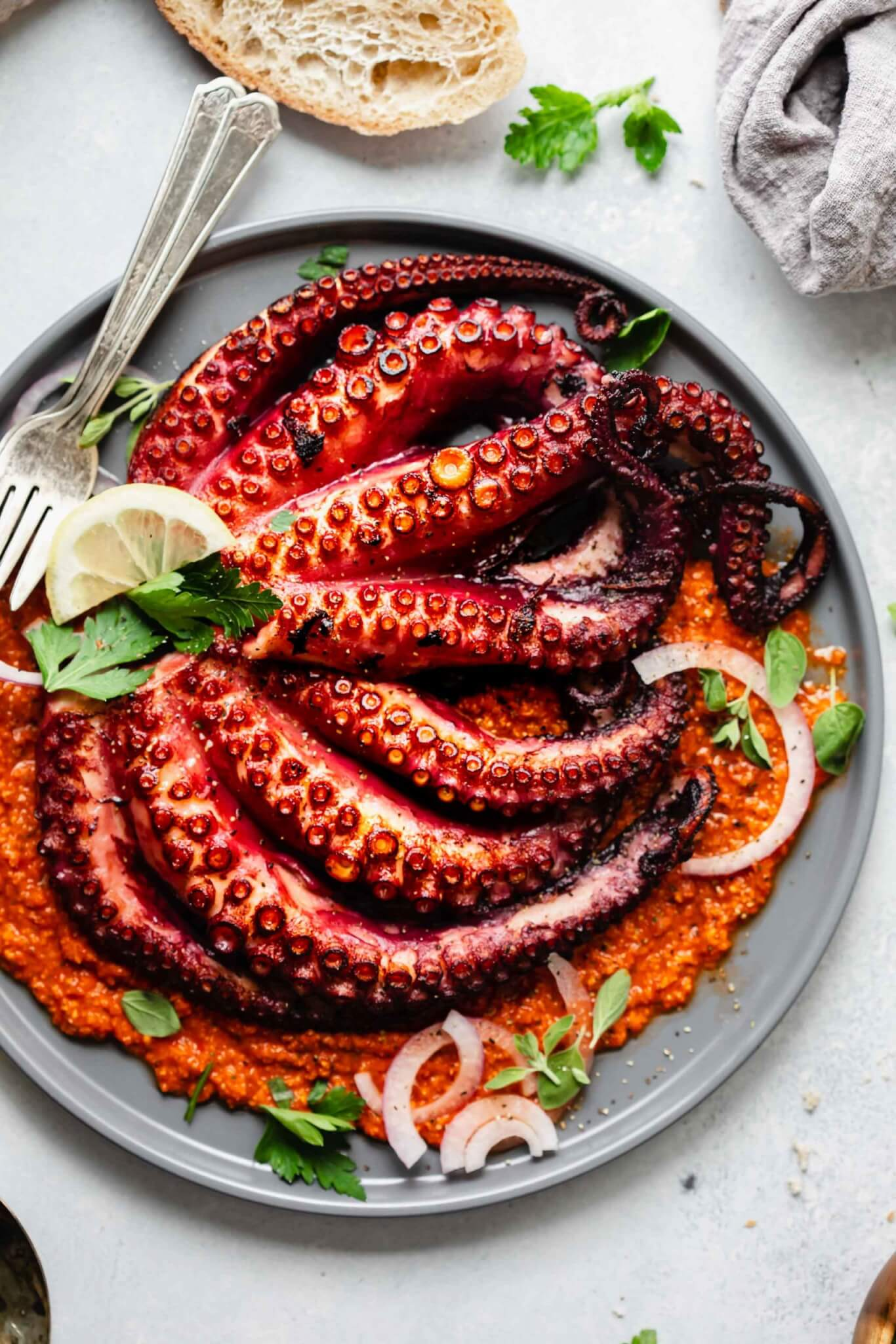 Seared sous vide octopus served on grey plate on a bed of romesco sauce.