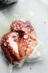 Octopus bagged up in food saver bag.