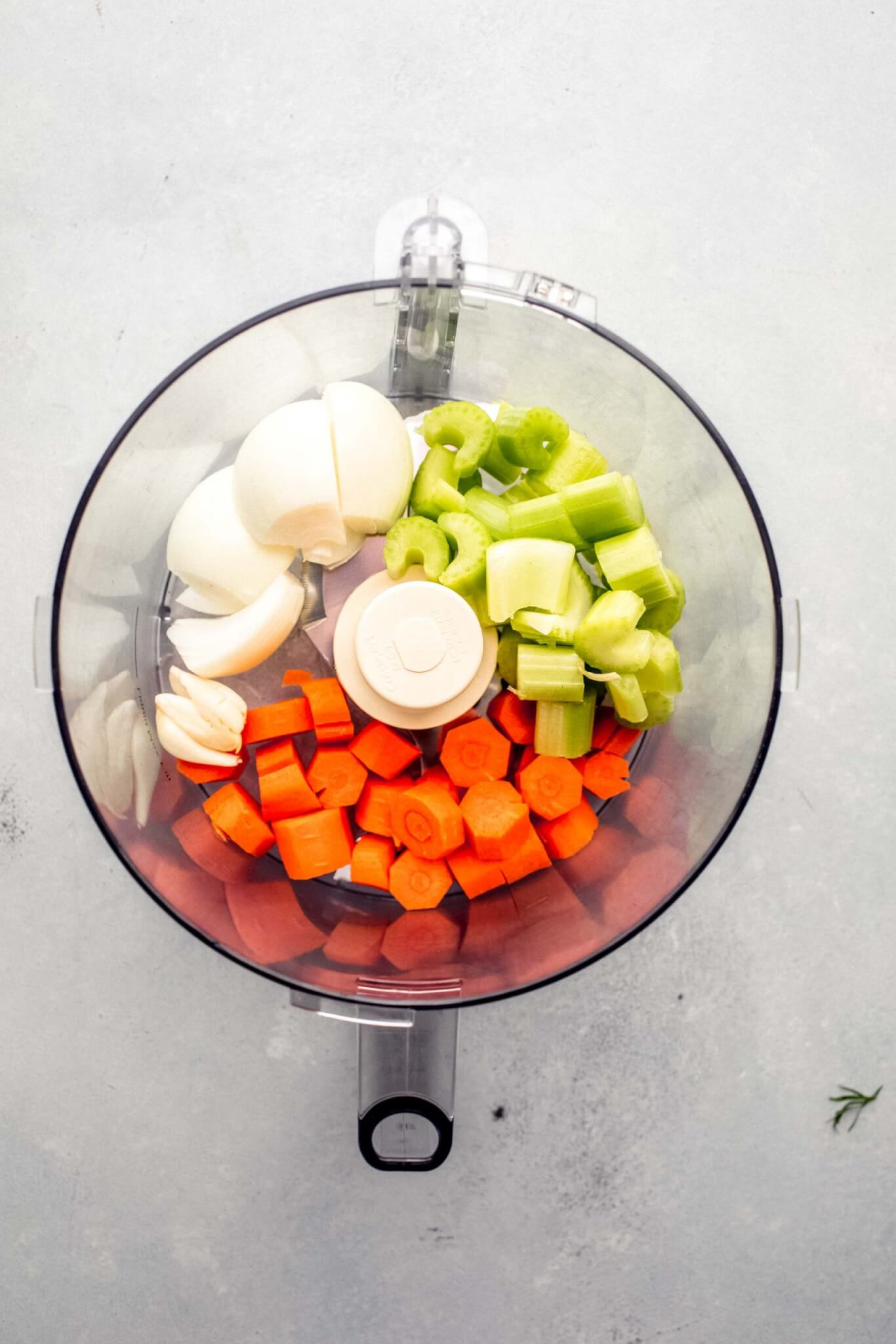 top shot of vegetables in food processor
