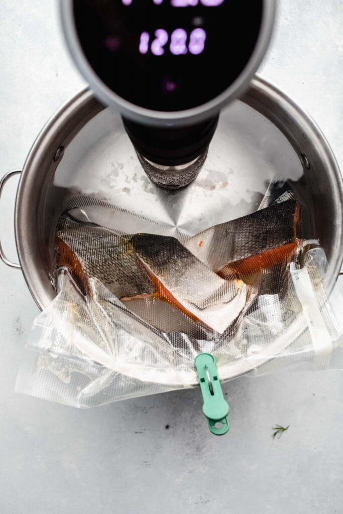 top shot of salmon in vacuum sealed bag cooking in sous vide bath